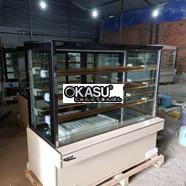 Tủ bảo quản kem OKASU OKA-09A