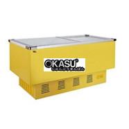 Tủ bảo ôn đông lạnh OKASU OKA-668DV