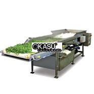 Máy rửa rau, trái cây công nghiệp