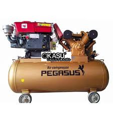 may nen khi pegasus tm-w-1.0/8-500l hinh 1